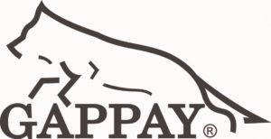 LOGO GAPPAY
