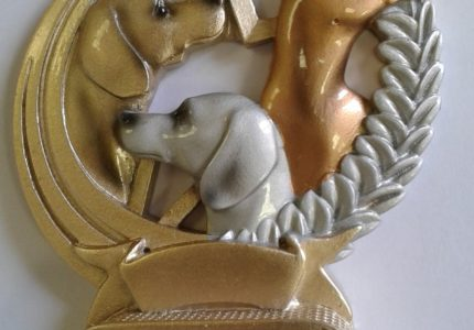 Ramzio taurė. Pagėgiai 2017